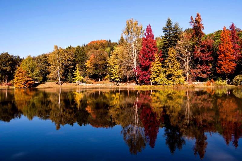 Atatürk Arboretumu Giriş Ücreti, Atatürk Arboretumu Giriş Ücreti 2019, Atatürk Arboretumu Giriş Ücretleri, Atatürk Arboretumu ücreti, Atatürk Arboretumu Giriş Ücreti fiyatı