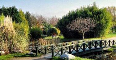 Bakırköy Botanik Park, Bakırköy Botanik Park nerede, Bakırköy Botanik Park giriş ücreti, Bakırköy Botanik Park nasıl gidilir, Bakırköy Botanik Park hakkında bilgi