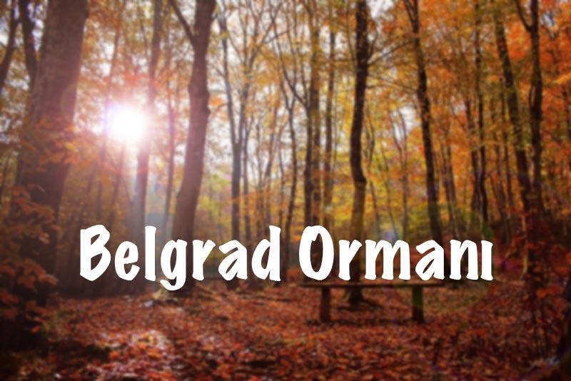Belgrad Ormanı, Belgrad Ormanları, Belgrad Ormanı hakkında bilgi, Belgrad Ormanı giriş ücreti, Belgrad Ormanı ziyaret saatleri