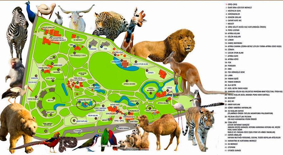 bursa hayvanat bahçesi kroki, bursa hayvanat bahçesi harita, bursa hayvanat bahçesi krokisi, bursa hayvanat bahçesi haritası